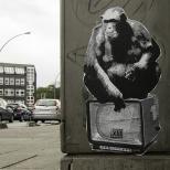 Streetart und Grafitti